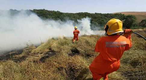Via alla campagna antincendio boschivo, patrimonio ambientale: Agraria Tarquinia sorvergliato speciale
