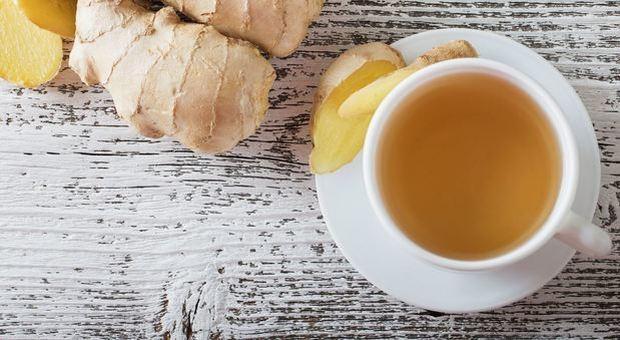 Il tè difende il cervello dall'invecchiamento: «I consumatori abituali hanno connessioni nervose più organizzate»