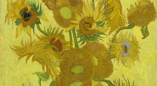 Fiori Gialli Tipo Girasoli.Aiuto Si E Scolorito Van Gogh Il Giallo Dei Girasoli Sta