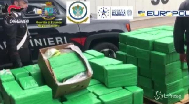 Una tonnellata di cocaina nei container di banane sequestrata a Gioia Tauro - Il Messaggero
