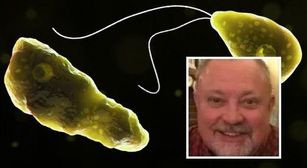 Ucciso da una ameba mangia-cervello dopo un bagno al lago: ecco cosa è