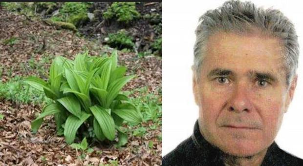 Raccoglie i fiori di finto zafferano e li mangia nella pasta: ex bidello morto avvelenato a 62 anni