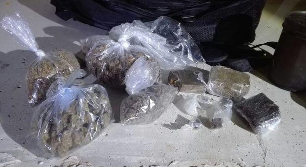 Roma Usava Il Garage Di Casa Come Serra Di Marijuana Arrestato 22enne