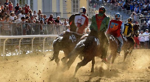 Firenze, morti due cavalli durante le prove del Palio di Fucecchio. Associazioni furiose: «La notizia è stata nascosta»