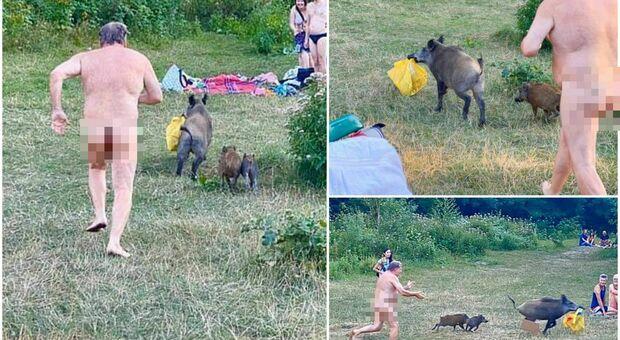 Nudista rincorre un cinghiale che gli ha rubato la borsa: l'inseguimento al lago diventa virale