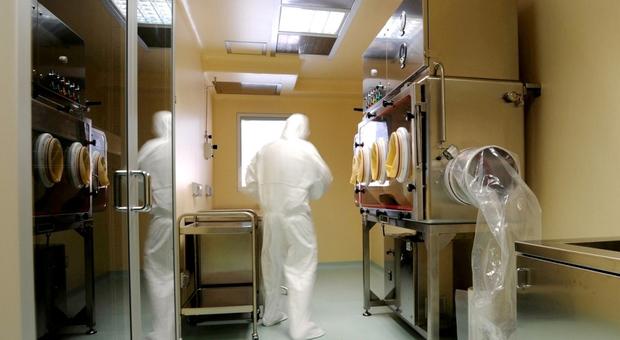Covid-19, gli esperti: «Il virus è arrivato in Abruzzo da Lombardia e Veneto»