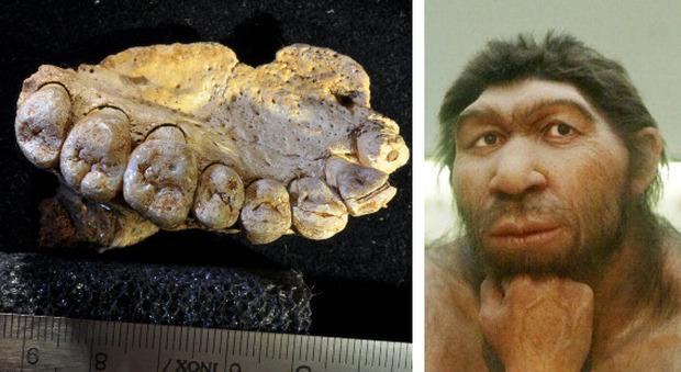 Neanderthal, scoperti fossili in Israele che fanno riscrivere la storia dell'evoluzione dell'uomo