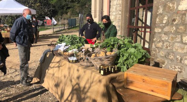 Un banco di Slow Food in campagna