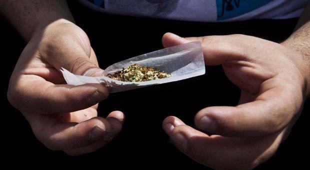 Cannabis, ecco i rischi concreti sui cervelli dei giovani