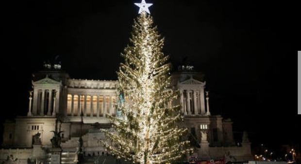 Albero Di Natale Roma.Roma Per Spelacchio Spesi 48mila Euro Il Triplo Dell