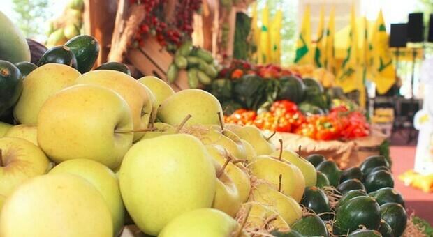 Mangiare due porzioni di frutta riduce il rischio del diabete 2: ecco perché