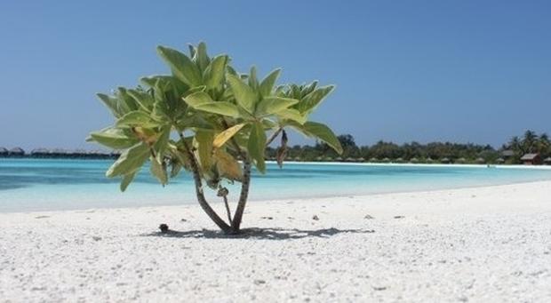 Coronavirus, famiglia italiana con tre figli bloccata alle Maldive. «Siamo chiusi nel resort»