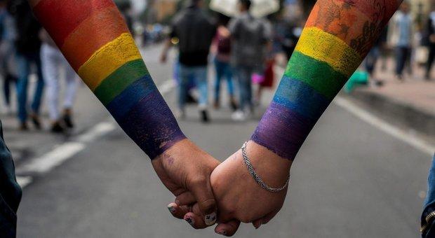 Gay, maxi-studio: omosessualità nasce da mix di Dna e fattori ambientali