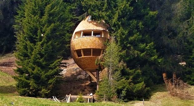 Un weekend da fiaba in montagna dove nelle casette sugli alberi - Casa sugli alberi ...