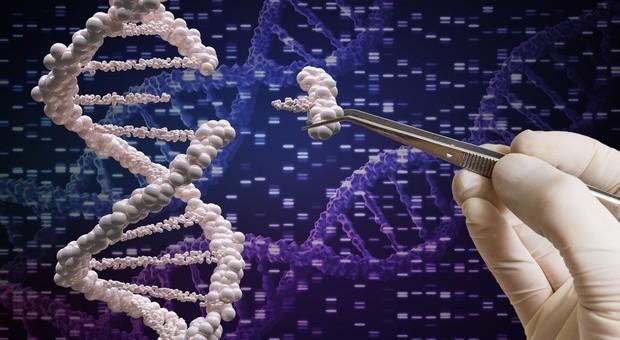 Tumore, il rischio di metastasi è scritto nel Dna dalla nascita