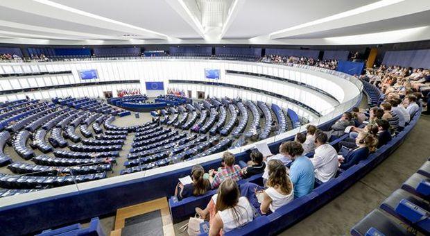 """Dazi, De Castro: """"Piano straordinario per agroalimentare UE"""""""