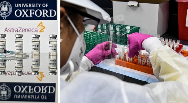 Vaccino Covid, Oxford: «Il nostro efficace al 70% ma più economico e facile da conservare»