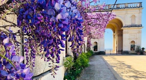 Uno scorcio di Villa d'Este col suo patrimonio naturalistico