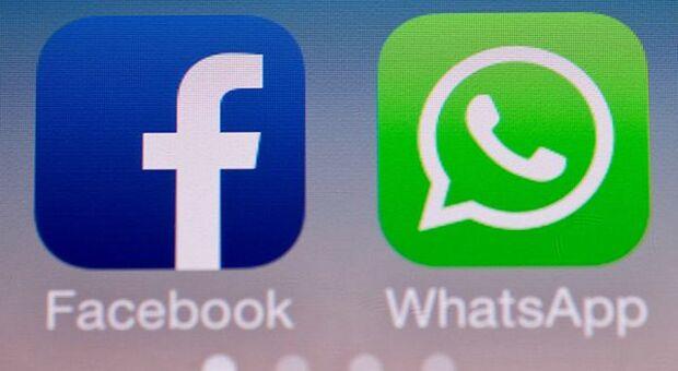 Milioni di nuovi utenti per Telegram e Signal dopo aggiornamento privacy WhatsApp