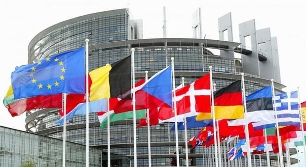 Sondaggio sulle Europee: Lega e FI crecono ancora, calano Pd e M5s