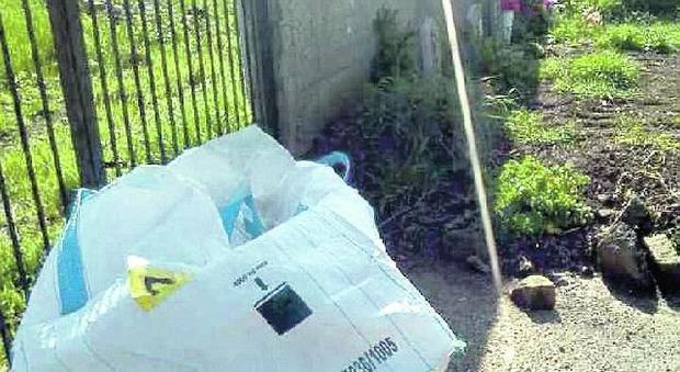 Bagnaia, Viterbo: fuori dal cimitero i sacchi con le bare fatte a pezzi