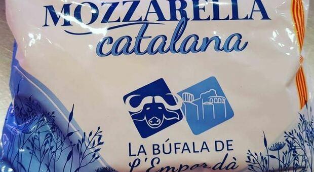Vendeva falsa Mozzarella di Bufala: denunciato caseificio spagnolo per frode alimentare
