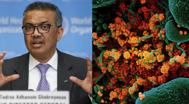 Coronavirus, l'Oms: «Non è un'epidemia stagionale, ci sarà un'unica ondata»