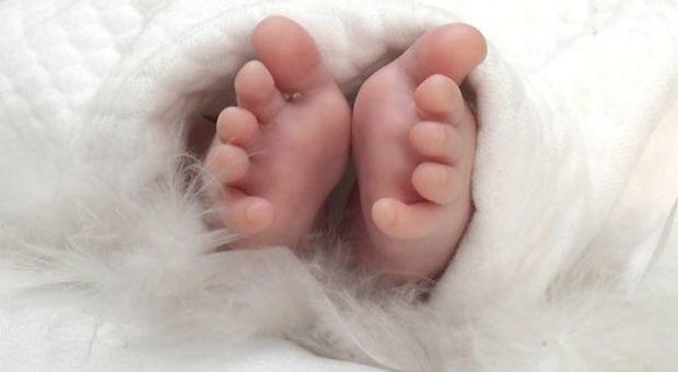 Decreto crescita: bonus bebè e sconti per latte e pannolini