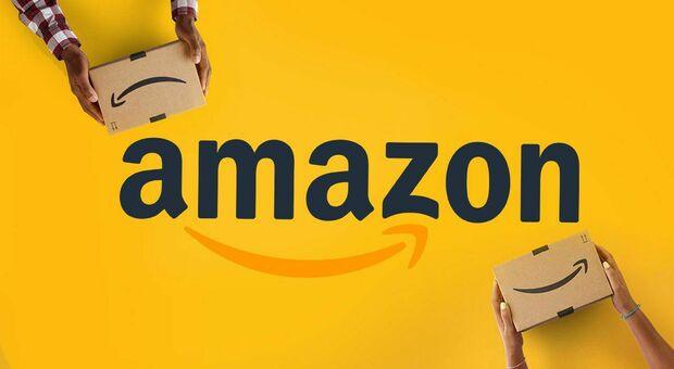 Amazon, gigante dell'e-commerce