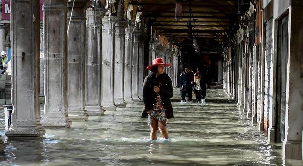 «Venezia, basta chiacchiere»: da Armani a Pellegrini e Ventura l'indignazione dei vip