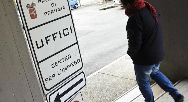 Perugia, occasioni di lavoro in farmacie e università
