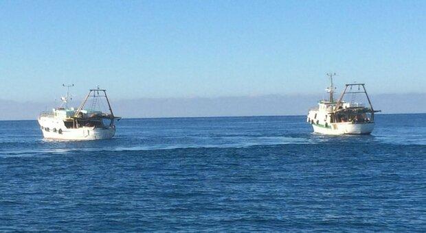 Guardia Costiera libica spara contro tre pescherecci italiani. Ferito il comandante dell'Aliseo