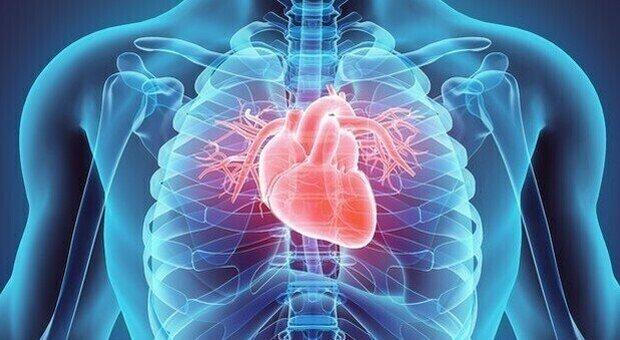 Torino, l'Intelligenza artificiale può migliorare le cure di chi ha avuto un infarto. Lo studio
