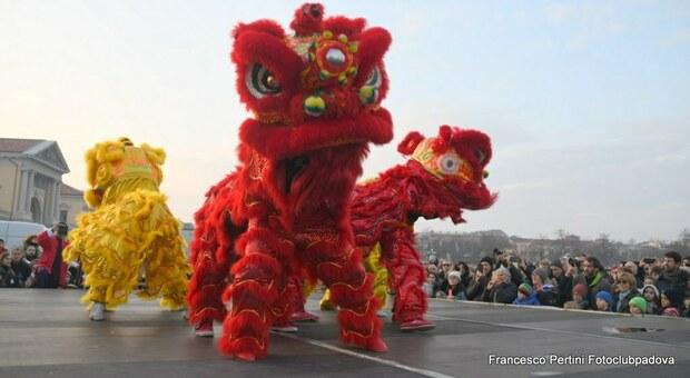 Capodanno lunare 2021, il 12 febbraio entra l'anno del Bue: tradizione, colori e numeri fortunati