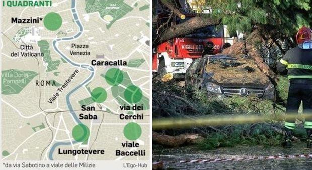 Roma, alberi killer: la mappa del rischio. Da Caracalla a San Saba 500 da abbattere