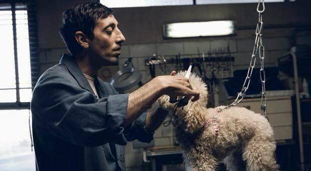 Stasera in tv, su Rai 4 Dogman : trama e curiosità del film selezionato per gli Oscar 2019