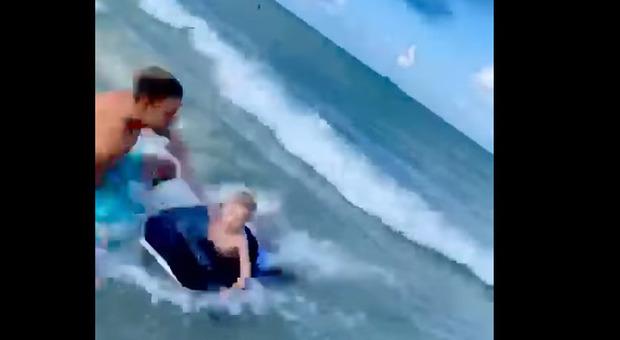 Squalo a riva in Florida, poliziotto-eroe si tuffa e salva il bambino sul materassino