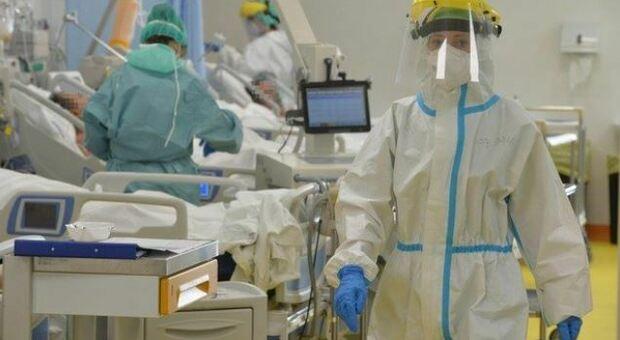 Covid, nuova terapia cellulare sperimentata al S.Matteo di Pavia: «I due pazienti trattati sono già stati dimessi in buone condizioni di salute»