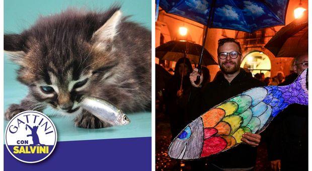 Ora le sardine puntano a piazza del Popolo. E Salvini lancia i gattini che... se le pappano