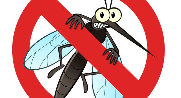 Risultati immagini per stop zanzare