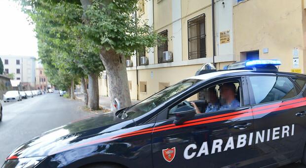 L'operazione messa a segno dai carabinieri
