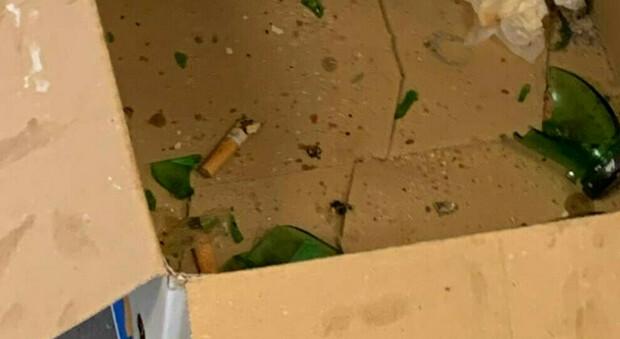 Roma, cicche sul pavimento, sporcizia e vetri rotti: chiuso un panificio a Garbatella