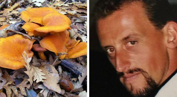 Punto dai calabroni mentre va a funghi, muore imprenditore di 51 anni