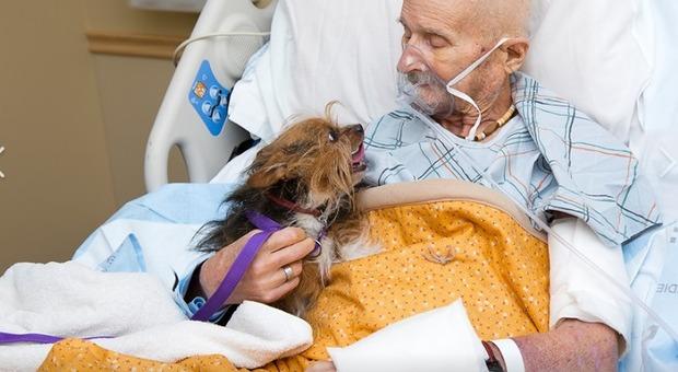 Ex soldato in fin di vita incontra il suo cane in ospedale per dirgli addio: era l'ultimo desiderio