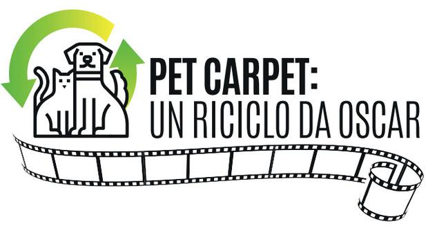 """""""Pet Carpet: un riciclo da Oscar"""": metti in circolo cucce, giochi, collari, ciotole, pettorine e farmaci che non usi più"""