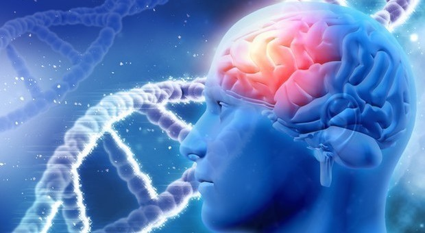 Calciatori più a rischio demenza e malattie neurodegenerative: «Per i tanti colpi di testa»