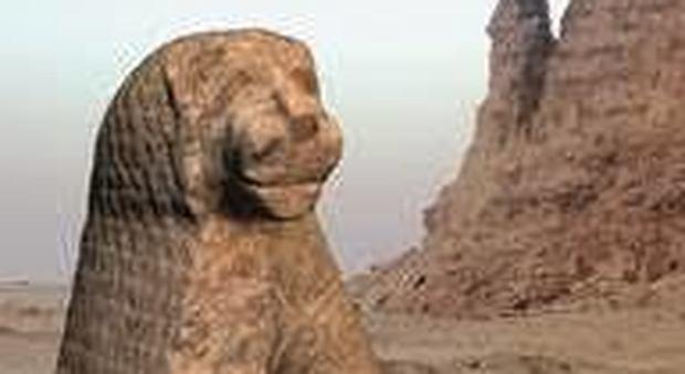 """""""Il Leone e la Montagna"""", per la prima volta a Roma reperti dagli scavi italiani in Sudan"""