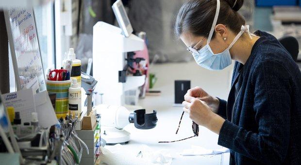 Coronavirus, nuovo decreto: reddito emergenza sino a 800 euro, a maggio bonus più ricchi