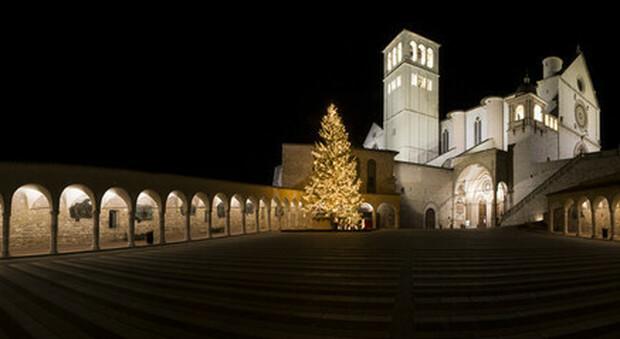 Natale, messaggio di speranza all'Italia, la Natività giottesca proiettata sulla basilica di Assisi