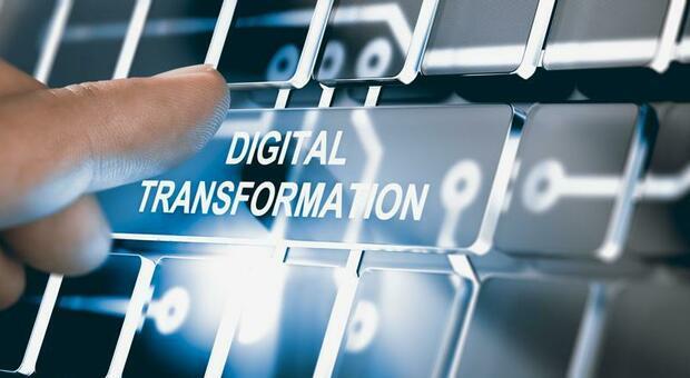 Frosinone, boom di investimenti delle aziende nel digitale ma gli informatici non si trovano